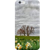 Almost Spring! iPhone Case/Skin