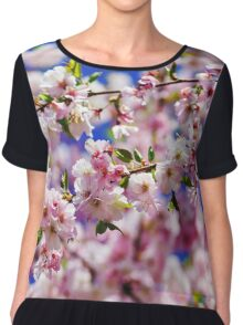 Beautiful pink flowers of cherry on blue sky background, april in France Chiffon Top