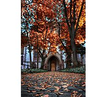 Autumn In Basel  Photographic Print