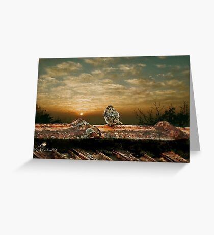 At the end of a wonderful day Greeting Card
