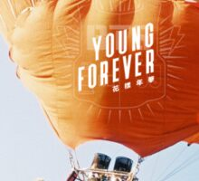 young forever BTS 5 Sticker