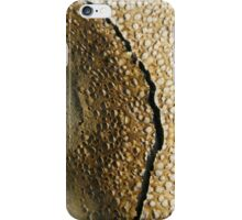 Mont Saint Michel sands boiling and cracking - 2011 iPhone Case/Skin