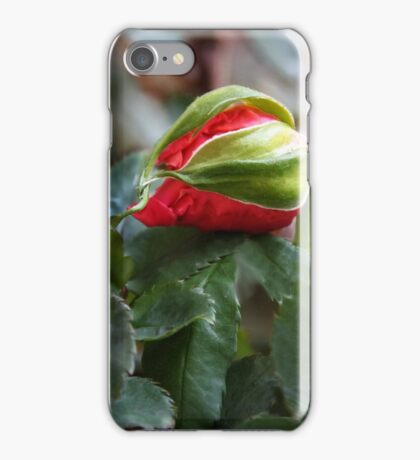 Sleepy Rosebud iPhone Case/Skin