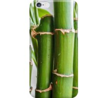 Bamboo D1 iPhone Case/Skin