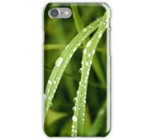 Raindrops on Dune Grass iPhone Case/Skin