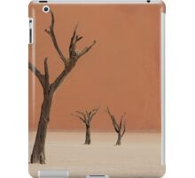 Dead valley in Namibia iPad Case/Skin