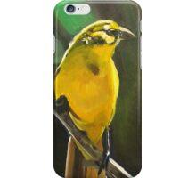 Canary - Nigma iPhone Case/Skin