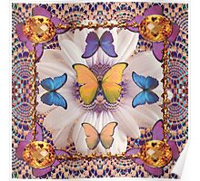 Lace Butterfly Hole Poster