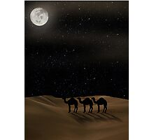 Desert Moon - Camel Crossing Photographic Print