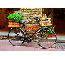 Old bicycle in Tuscany Photographic Print