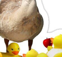 Back to School, my little rubber duckies! Sticker