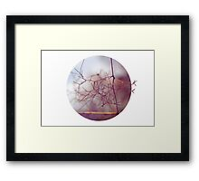 Of dragons and scary places Framed Print