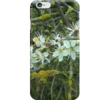 Decayed Blossom iPhone Case/Skin