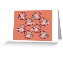 Luvdisc (pattern) Greeting Card