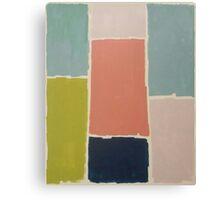 Color blocks Canvas Print