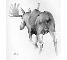 Moose Departing Photographic Print