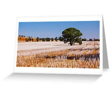 Tree in Field  Greeting Card