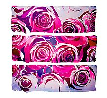 Roses in pink and purple Photographic Print