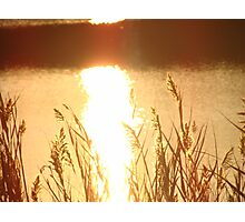 Golden Sun Photographic Print