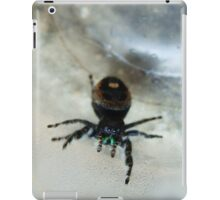 Cute Fuzzy Spider iPad Case/Skin