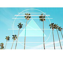 Berkeley Palms Photographic Print