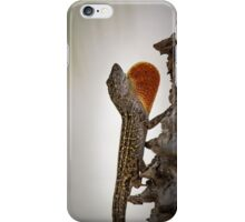Brown Anole iPhone Case/Skin