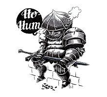 Ho-Hum Photographic Print