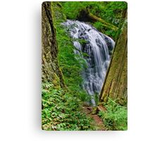 Waterfall and Green Vegetation Framed by Trees Canvas Print