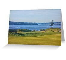 Chambers Bay Tree on the Puget Sound  Greeting Card