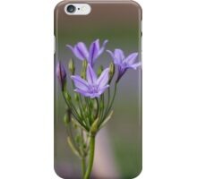 Ithuriel's Spear iPhone Case/Skin