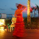 Flamenco on the beach by Allen Lucas