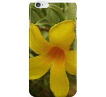 Morning flower dew drops iPhone Case/Skin