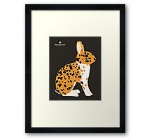 Black Spotted Japanese Rabbit Framed Print