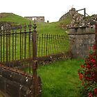 The Leaning Fence by kalaryder