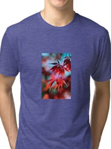 Japanese Red Maple Tri-blend T-Shirt