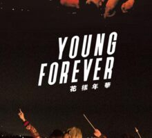 BTS/Bangtan Sonyeondan - Young Forever Night Scenes Sticker