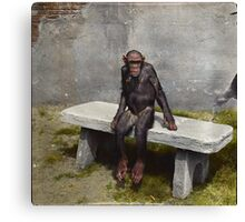 """""""Mary"""" on a bench with a pipe, ca 1940 Canvas Print"""