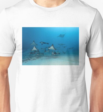 Wing Pack T-Shirt