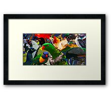 Birds of a Different Feather Framed Print