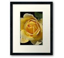 Look into it's Beauty Framed Print