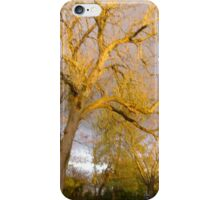 Catalpa tree with storm approaching iPhone Case/Skin