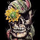 Snake and Skull by nicebleed