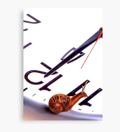 Snail sitting on clock face at 12 ocklock Canvas Print