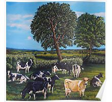 Nein Cows Poster