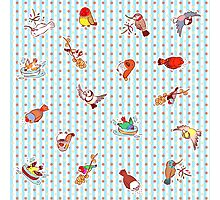 Cute cartoon finches pattern Photographic Print