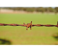 Rusty Barbed Wire Fence Photographic Print