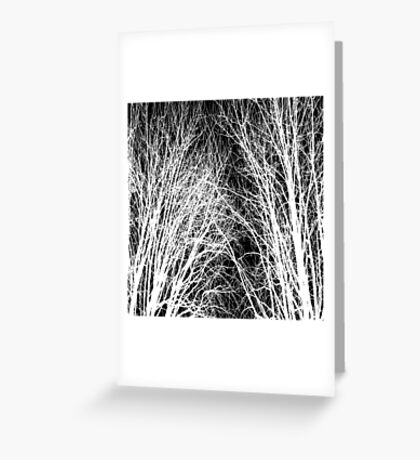 Comely trees 1 Greeting Card