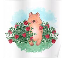 Bear and raspberry Poster