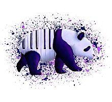 Piano Panda Photographic Print