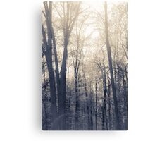 Out of the Woods of Indiana Canvas Print